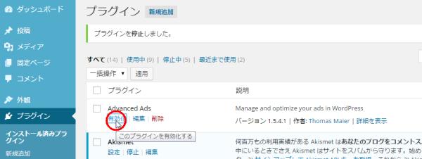 Advanced Adsをインストールして有効化します。